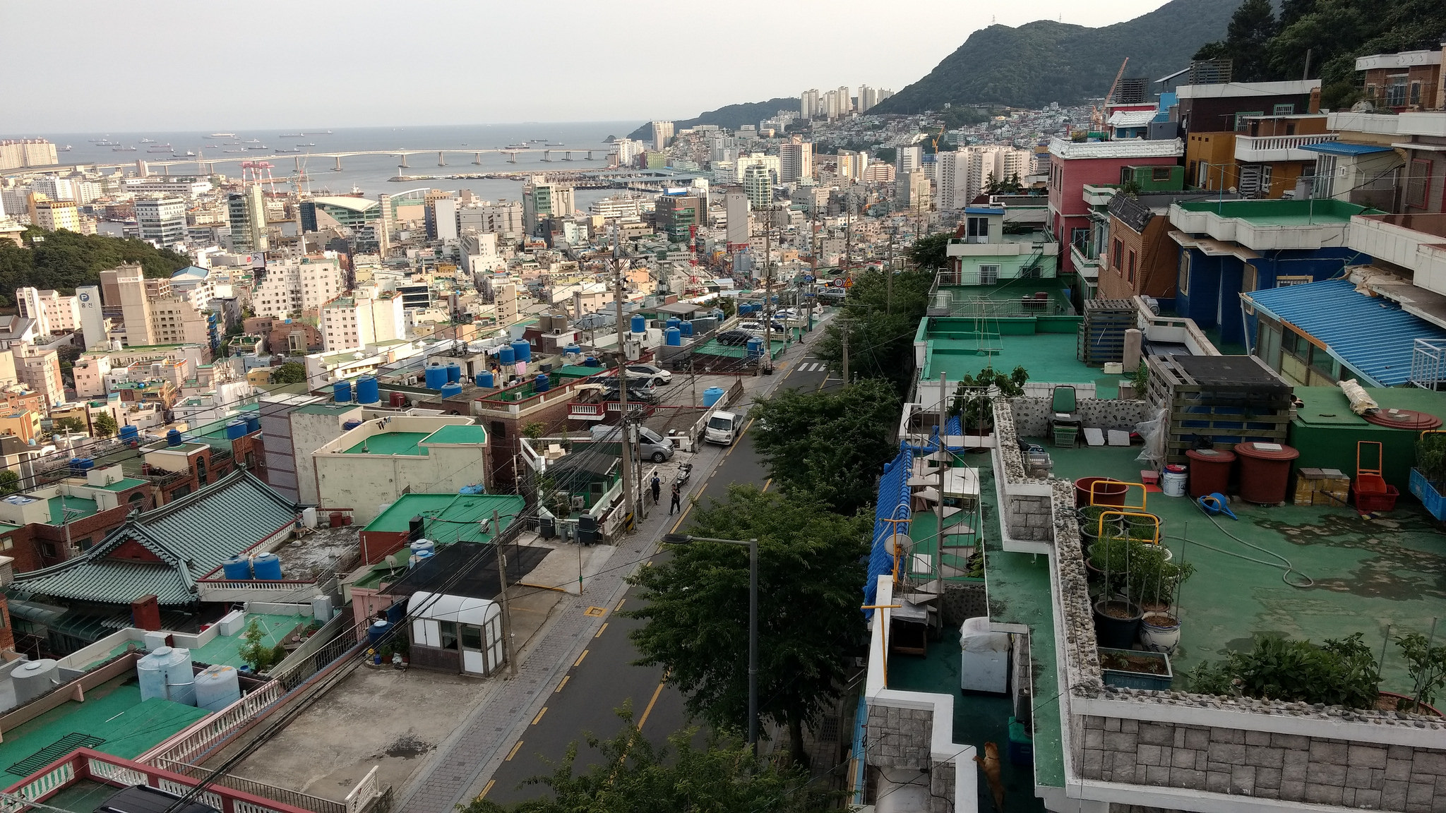 Beautiful Busan